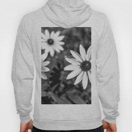 Three Gloriosa daisies B&W Hoody