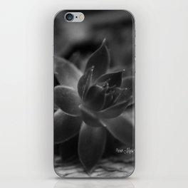 Succulent B/W3 iPhone Skin