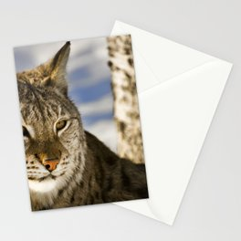 Gazing Lynx Stationery Cards