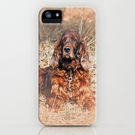 Red setter iPhone Case