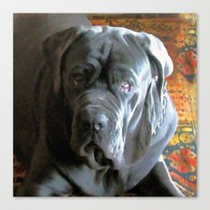My dog Ovelix! Canvas Print