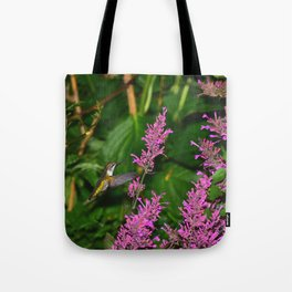 Hummingbird and agastache flower 60 Tote Bag