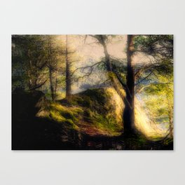 Misty Solitude, The Way Through The Woods Canvas Print