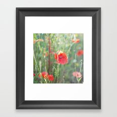 The Waking Garden Framed Art Print