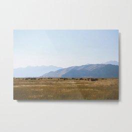 Antelope Flats Metal Print