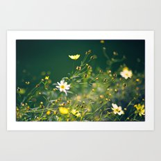 Spring Applause Art Print