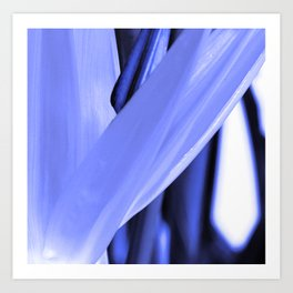 Strelitzia Reginae (Blue version) Art Print