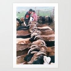 Goats in the Ghobi Art Print