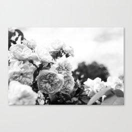 A cluster of petals Canvas Print