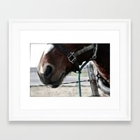 pony Framed Art Prints featuring Pony by Lydia Helbig