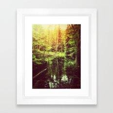 Mirror Pond Framed Art Print