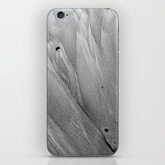 Silver Sands iPhone & iPod Skin