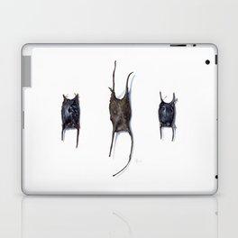 Skate Egg Cases Laptop & iPad Skin