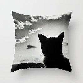 cat view Throw Pillow