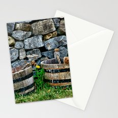 Buckets and Rocks Stationery Cards