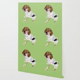 Caroline Wallpaper