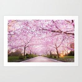 Pink Road Art Print