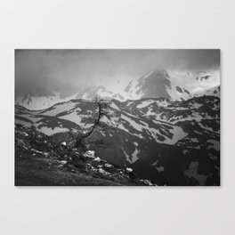 Lonely tree with stunning view on mountains Canvas Print