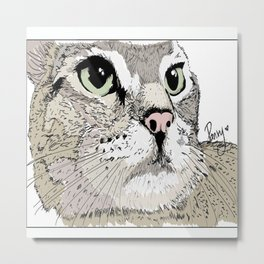Close up CAT Metal Print