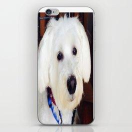 Maxx dogg 2 iPhone Skin