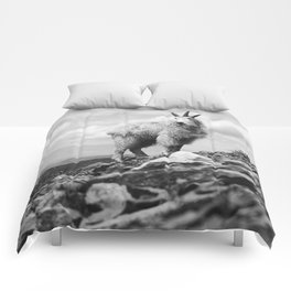 KING OF THE MOUNTAIN Comforters