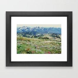 Wildflower Meadow Framed Art Print
