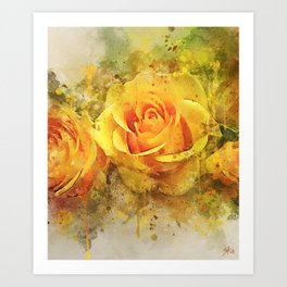 Watercolor Yellow Roses   High Quality On Stretched Canvas Art Print