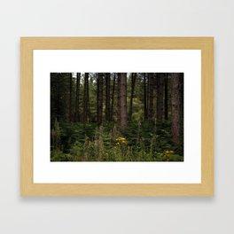 Untitled. Delamere. Framed Art Print