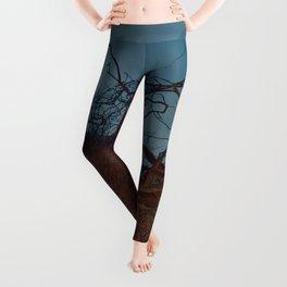 armor (back to unnatural) Leggings