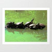 Turtles in green water Art Print