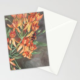 Milkweed Flowers and Milkweed Bug Stationery Cards