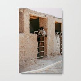 Morocco Desert Horse photo print - Agafay pastel desert  Metal Print