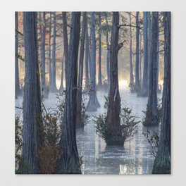 Adams Mill Pond 50 Canvas Print