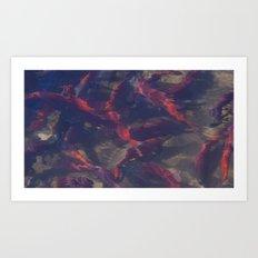 Salmon Hatchery Art Print