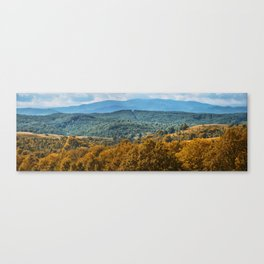 Summer panorama Canvas Print