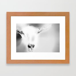 Got your Goat Framed Art Print