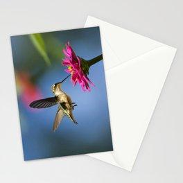 Hummingbird Flight Stationery Cards