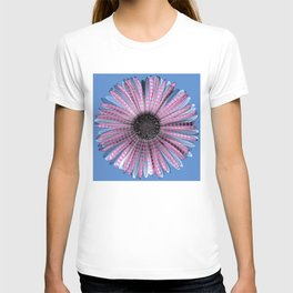 Urban daisy wearing street-cred stripes T-shirt