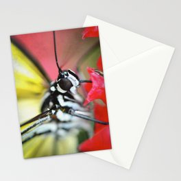 BFX | nourishing woodnymph (butterfly) Stationery Cards