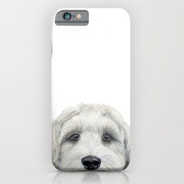 Labradoodle white by miart iPhone Case