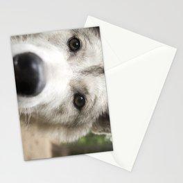 Aurora - Wolf Stationery Cards