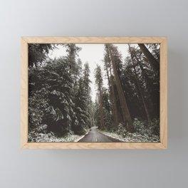 Redwood Forest Adventure II - Nature Photography Framed Mini Art Print