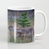 coyote Mugs featuring Coyote by Stu Naranch