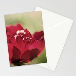 JW Photography Stationery Cards