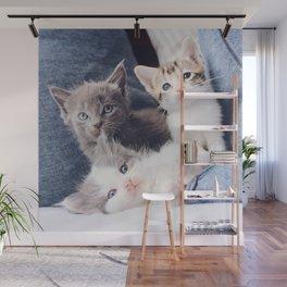 Cat by The Lucky Neko Wall Mural