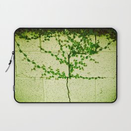 Ivy Wall Laptop Sleeve