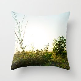 Field Brush Throw Pillow