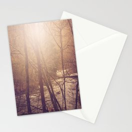 Forest Aglow Stationery Cards
