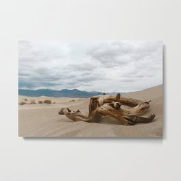 Sand Branch Metal Print