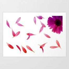 purple petaled flower  Art Print